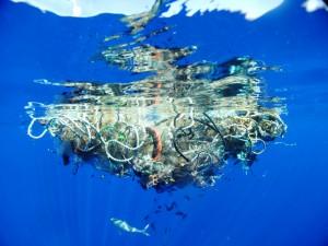 проблемы картинки экологические мусора