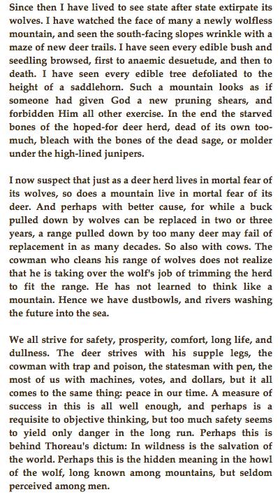 Aldo leopold essay thinking like mountain