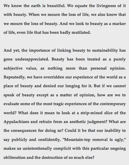 beauty and sustainability desperado philosophy  essay first published in tikkun magazine in 2011 and excerpted below the images are from the studio of gail boyajian whose work unabashedly sustains