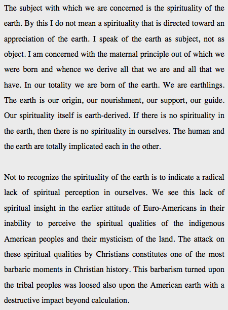 spirituality of the earth desperado philosophy the below excerpts from an essay by thomas berry date from 1990 though the subsequent years have done little to diminish the significance and urgency of